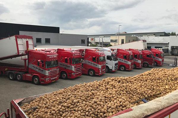 Van-der-windt-Aardappel-5
